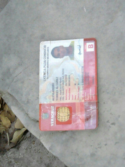 Licencia del piloto
